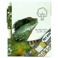 A6 Vive Pet, Igor Iguana