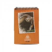 A6 Notepad - Light Brown Owl