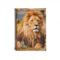 A5 Notebook - Earthy Lion