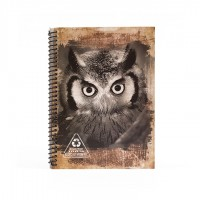 A5 Notebook - Burgundy Owl