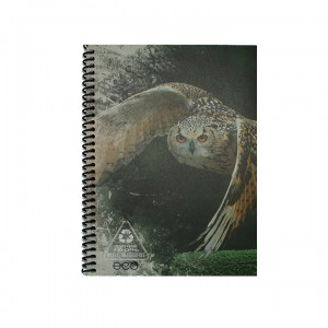 A5 Notebook - Light Brown Owl
