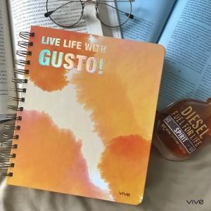 2019 PLANNER VIVE Gusto Orange Vibrant Dimensions