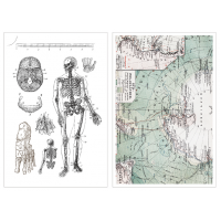 Print On Sticker-Maps & Bones